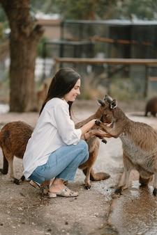 Kobieta w rezerwie bawi się kangurem
