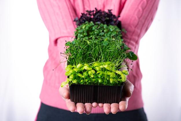 Kobieta w różowej koszulce trzymająca w dłoniach dużo zielonych warzyw na brązowych tacach, dostawa mikroelementów, zdrowa eko żywność