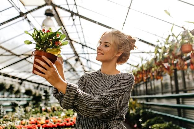 Kobieta w świetnym nastroju patrząc na liście krzewu w brązowym garnku. blondynka uśmiecha się w sklepie roślin.
