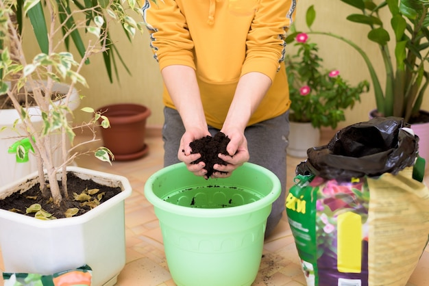 Kobieta w żółtym swetrze przesadza rośliny doniczkowe, opryskuje domowe kwiaty pistoletem natryskowym.