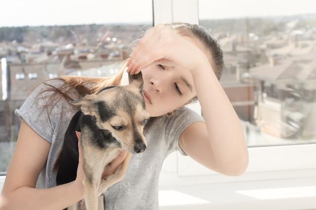Kobieta weterynarz bada małego psa teriera, sprawdza uszy