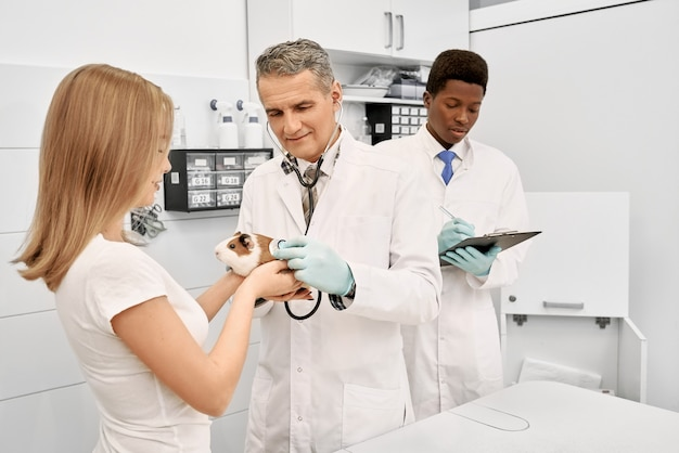 Kobieta, właściciel trzymając w rękach chomika, podczas gdy lekarz bada zwierzaka stetoskopem. afrykański asystent pisze w folderze. profesjonalny lekarz weterynarii ubrany w fartuch medyczny i rękawiczki.