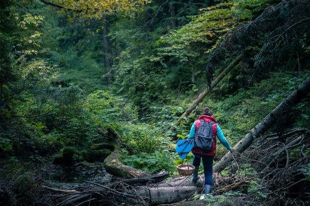Kobieta z koszem spacerująca po lesie w poszukiwaniu grzybów. kopiuj przestrzeń