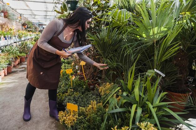 Kobieta z notatnikiem sprawdza rośliny