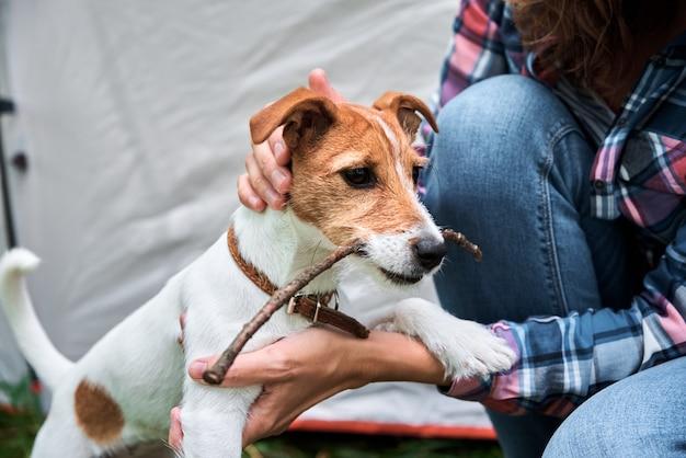 Kobieta z psem jack russell terrier na zewnątrz. relacje i koncepcja opieki nad zwierzętami