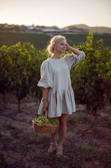 Kobieta z wiklinowym koszem zielonych winogron stoi w swojej winnicy o zachodzie słońca