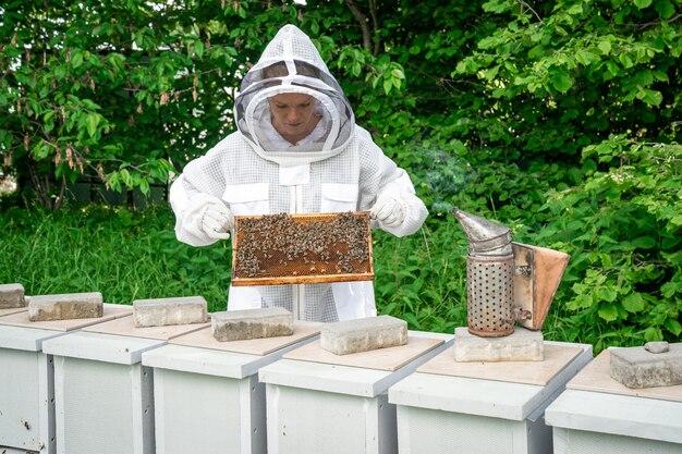 Kobieta z woskową ramą z pszczołami w pszczelarstwie