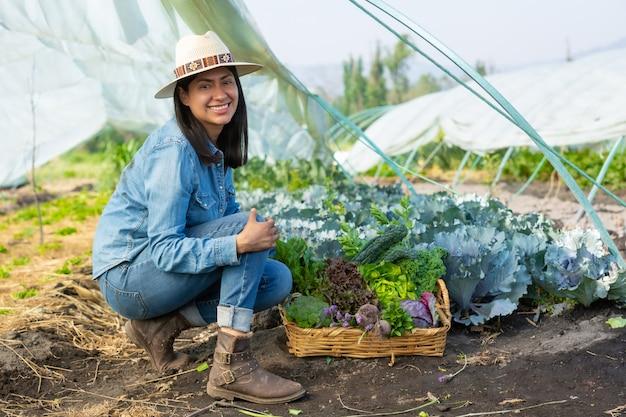 Kobieta zbiera warzywa