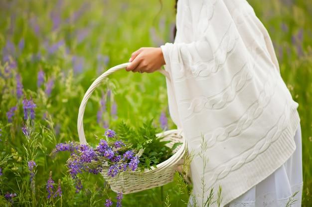 Kobieta, zbierając kwiaty bzu w wiklinowym koszu na łące.