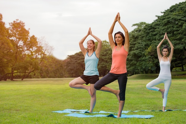 Kobiety ćwiczące w parku.