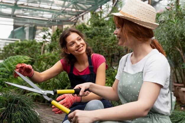Kobiety dbające o rośliny w szklarni