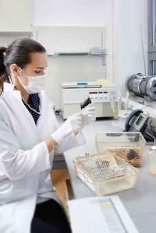 Kobiety-naukowcy zajmują się myszą laboratoryjną