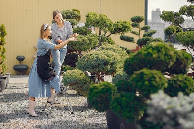 Kobiety pracujące w szklarni z zielonymi drzewami
