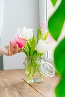 Kobiety ręka dotyka pączki tulipany w wazie na parapecie