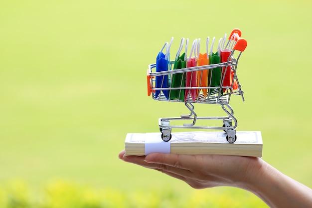Kobiety ręki chwyta wózek na zakupy i torba na zakupy wśrodku kosza na pieniądze.