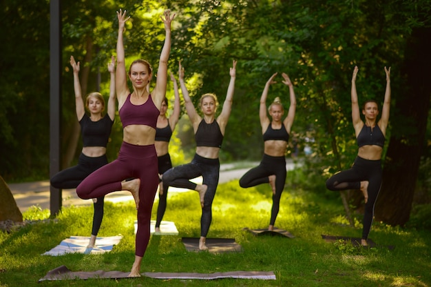 Kobiety robią ćwiczenia rozciągające, grupowy trening jogi na trawie