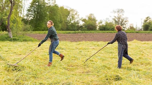 Kobiety zbierające trawę