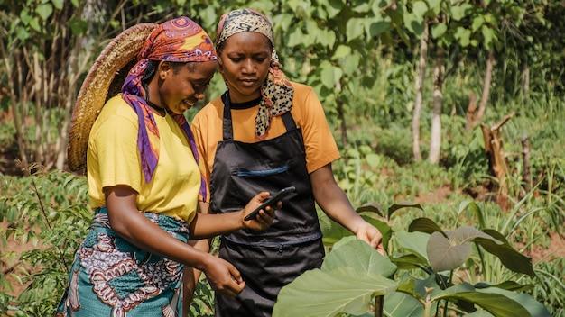 Kobiety ze wsi razem przeglądające telefon