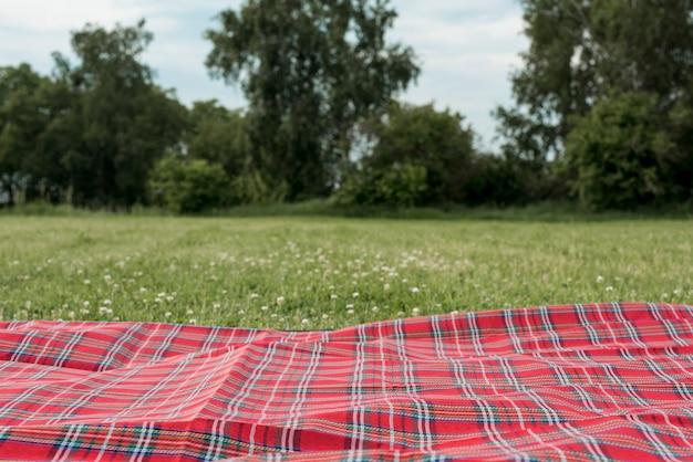Koc piknikowy na trawie w parku
