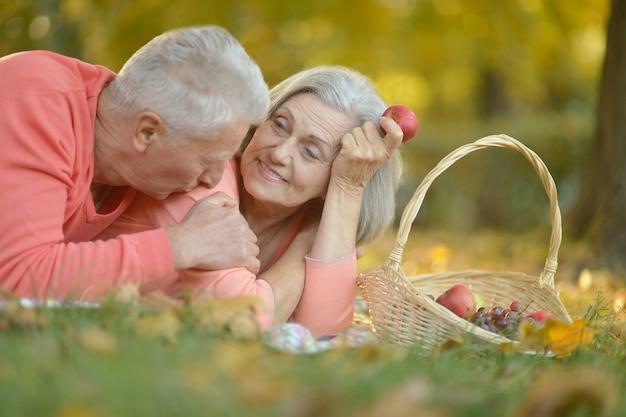 Kochająca starsza para na pikniku w parku