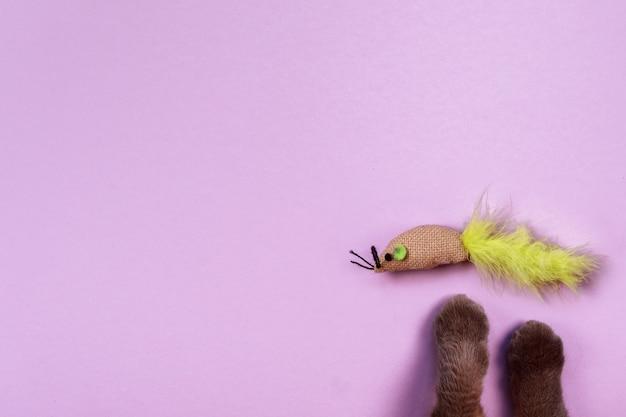Kocie łapki i zabawkowa myszka na fioletowym tle. skopiuj miejsce. przedmioty, produkty i zabawki dla zwierzaka. koncepcja sklepu zoologicznego.