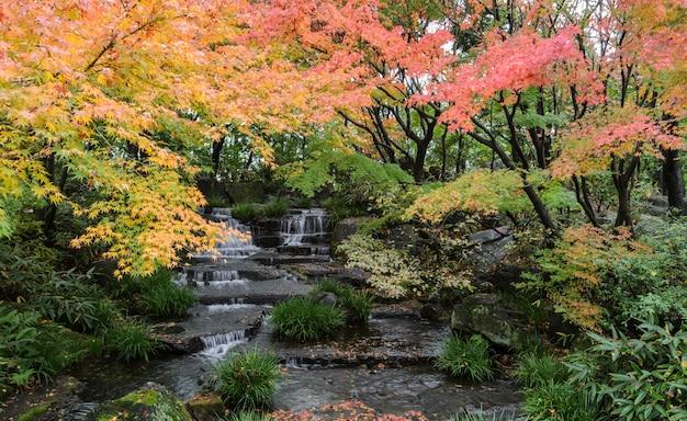 Kokoen, tradycyjny japończyka ogród podczas sezonu jesiennego w himeji, japonia