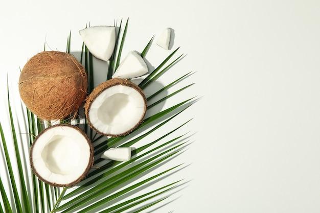 Kokos i palmy gałąź na białym, odgórnym widoku ,.