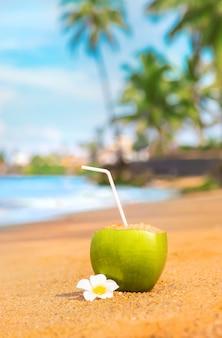 Kokos na koktajlu na plaży.