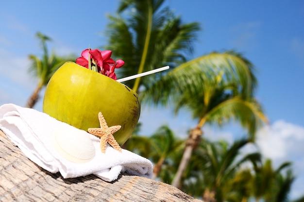 Kokos ze słomką na palmie nad morzem