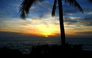 Kokosowe zachód słońca