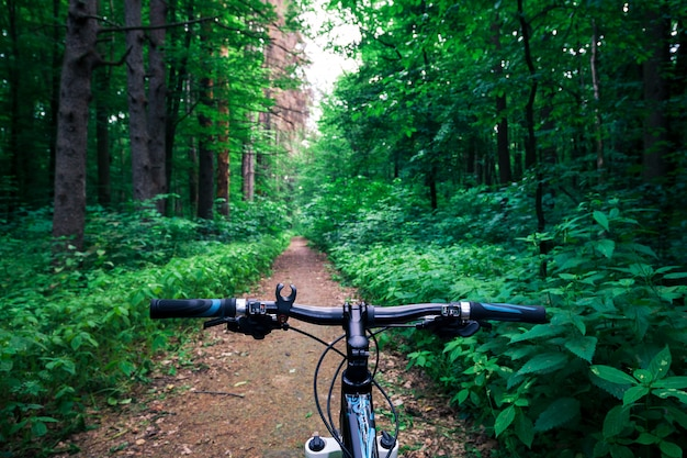 Kolarstwo górskie w dół wzgórza szybko na rowerze. zobacz z oczu rowerzystów.