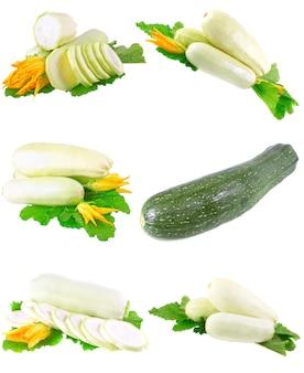 Kolaż (kolekcja) szpiku świeżych warzyw z zielonymi liśćmi na białym tle. pojedynczo na białym