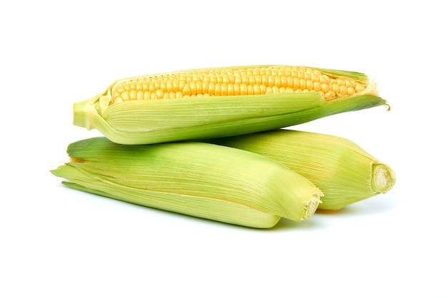 Kolby świeżej kukurydzy organicznej na białym tle