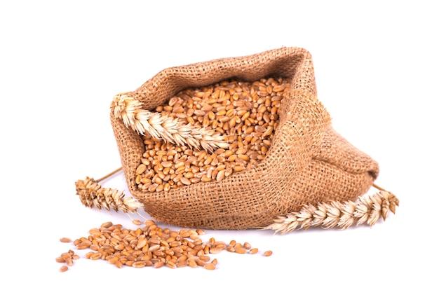 Kolec pszenicy i ziarna pszenicy w woreczku jutowym na białym tle