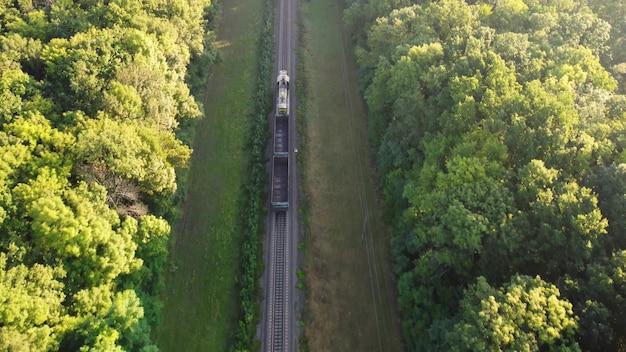 Kolej i pociąg przez las rano.