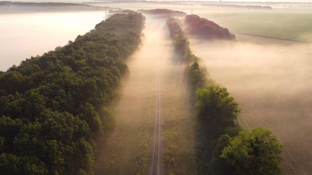 Kolej jednotorowa w lesie. poranna mgła nazywana jest torami kolejowymi.