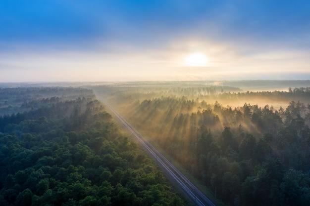Kolej w lecie rano w lesie o świcie. wspaniały letni krajobraz nakręcony z drona. promienie słoneczne przebijają się przez mgłę i gałęzie zielonych sosen.