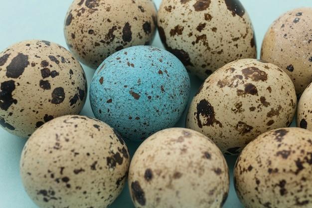 Kolekcja jaj przepiórczych pod dużym kątem