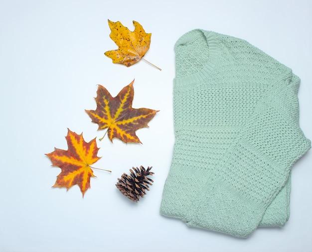 Kolekcja jesienno-zimowa. sweter, opadłe liście, szpilka na białym. widok z góry