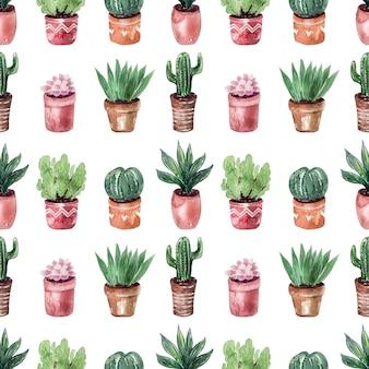 Kolekcja kaktusów w doniczkach wzór bez szwu