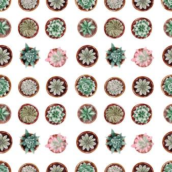 Kolekcja kaktusów w doniczkach wzór