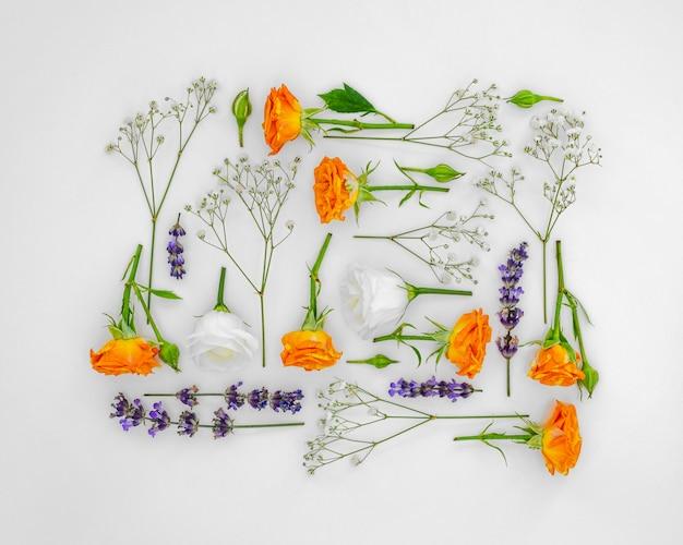 Kolekcja kwadratowych kwiatów