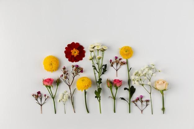 Kolekcja kwiatów widok z góry na stole