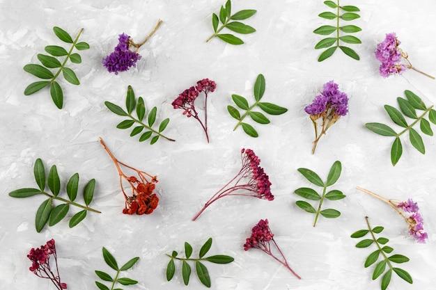 Kolekcja kwiatowy widok z góry