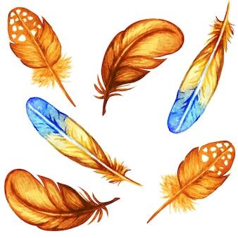 Kolekcja piór akwarela jesień na białym tle