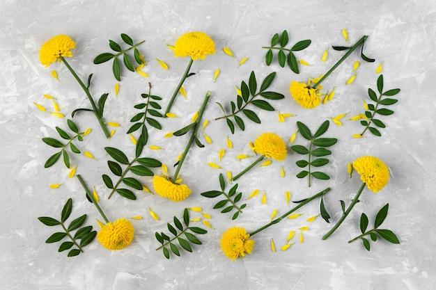 Kolekcja płaskich kwiatów świeckich na stole