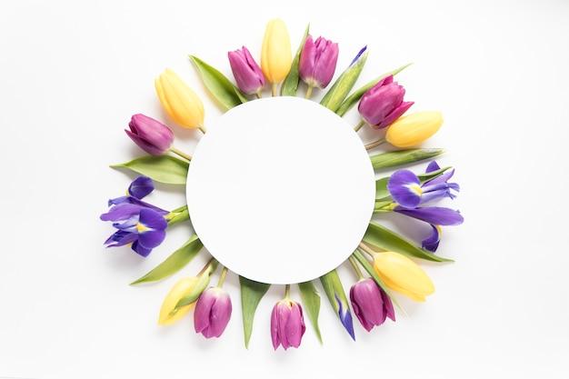 Koło tulipanów i irysów