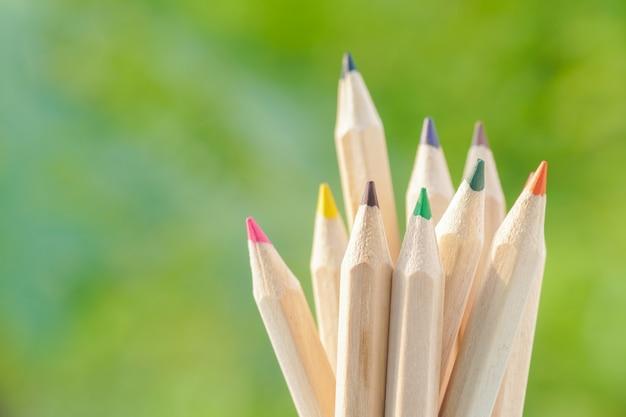 Kolor ołówek na zielonym tle