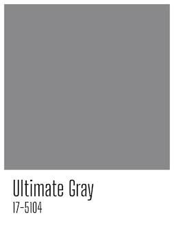 Kolor Roku Pantone 2021 Ultimate Grey. Szara Pusta Karta Z Miejsca Na Kopię Premium Zdjęcia