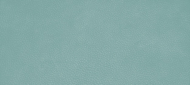 Kolor tekstury skóry naturalnej green canton.